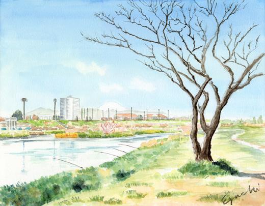 20090315_tamagawa.jpg