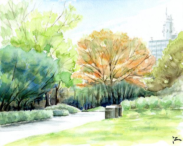 20111010_yoyogikoen.jpg
