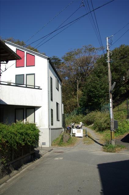 20121104_nagoe_1.jpg