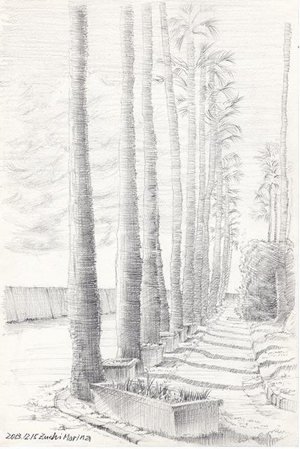 20131220_palmtree.jpg