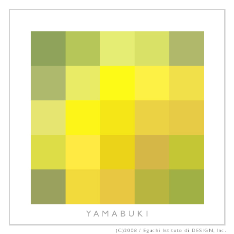 20080417_yamabuki.jpg