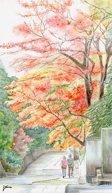 20140124_engakuji_koyo_2.jpg