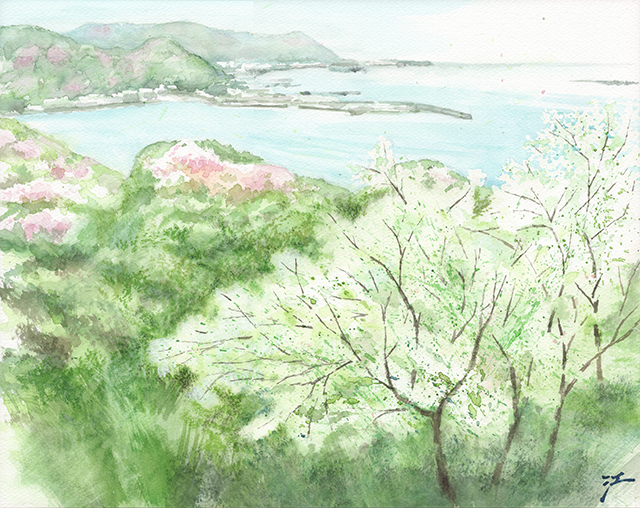 20140506_oshimazakura.jpg