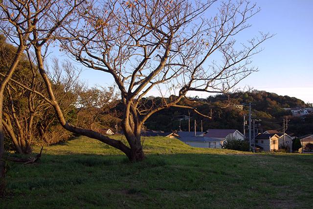 20151128_sunset_2.jpg