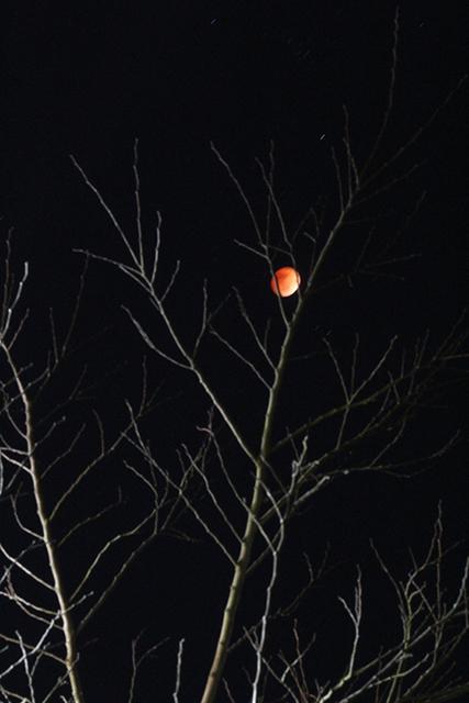 20180131_moon_IMG_2857_640.jpg